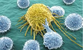 4 Makanan Tingkatkan Resiko Sel Kanker